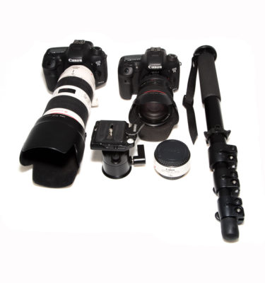 Canon Safari Packages
