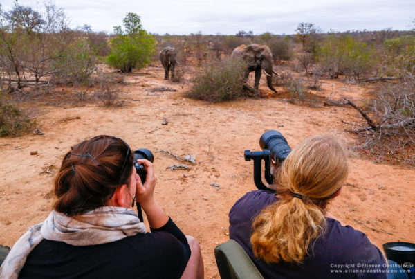 Simbavati Wildlife photography workshop 28 September to 02 October 34
