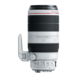 Canon EF 100-400mm f/4.5-5.6 L IS USM Mark II