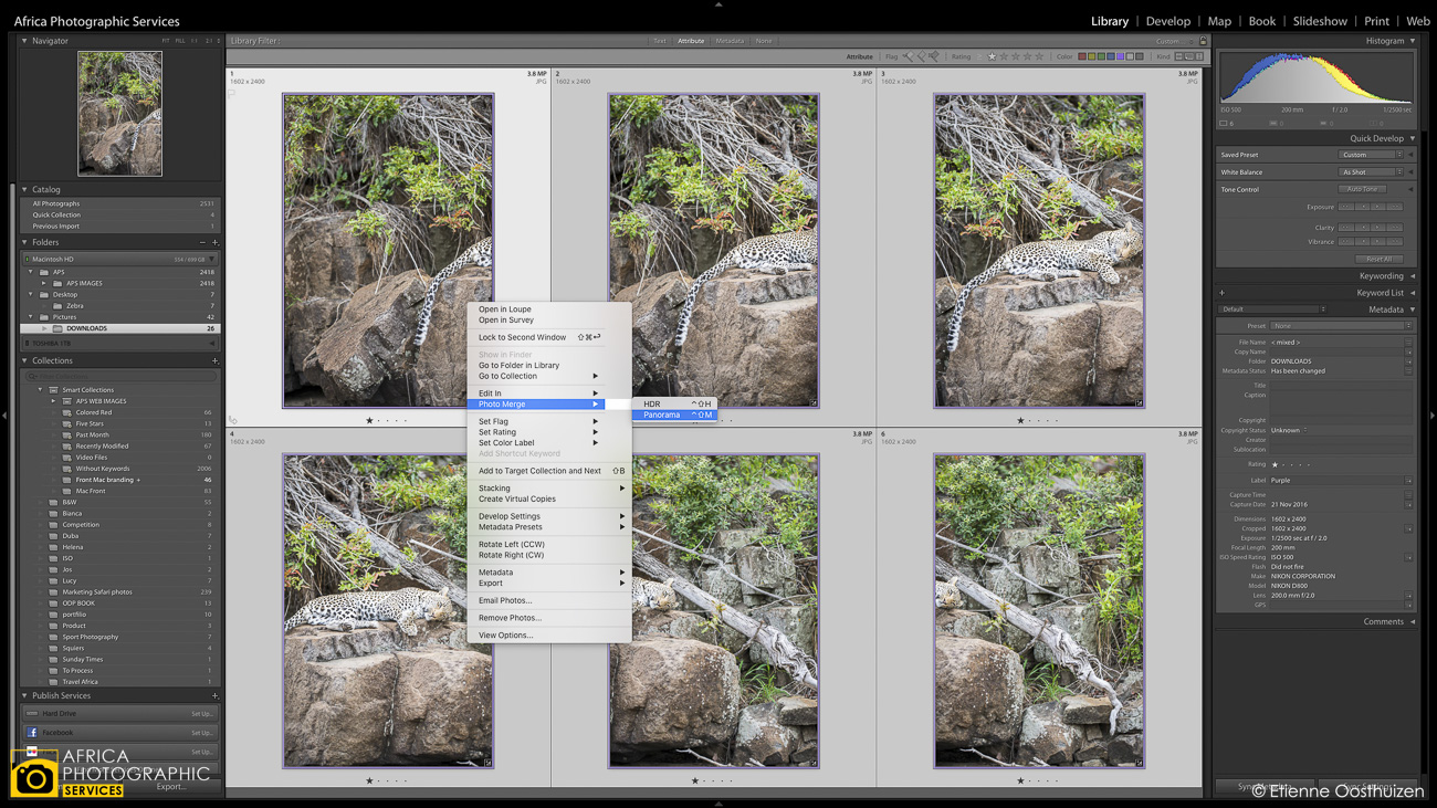 Creating photographic context with Telephoto Panorama's 17